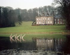 http://www.jeanbaptistecourtier.com/files/gimgs/th-9_chateauLDindex.jpg