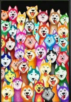 Love this Pin. Siberian Huskies Gallore in funky colors.