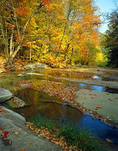 Stickney Brook, Windham County, Vermont Autumn, Fall, Vacation Spots, Rivers, Vermont, View Photos, New England, Beautiful Places, Heaven
