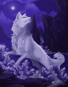 Calla in wolf form patrolling her territory from intruders as well as trying to find Shay, her mate