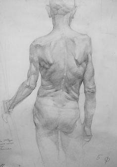 #рисунок #начерк #натура #lifedrawing #олівець #спина #бартосік #наома