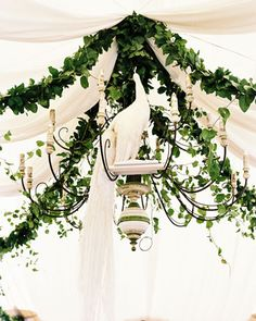 chandelier, vines and draping.