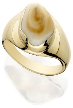 14K Yellow Gold Natural Elk Ivory Ring
