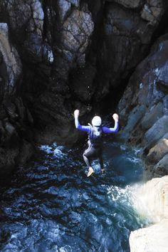 and the cliffs at Ballyhornan. Bald Eagle