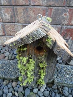 Bird House  Rustic Bird  House  Natural Bird House by donnahubbard