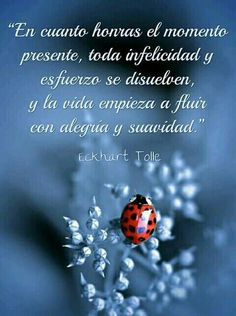 Honra el momento... Wise Quotes, Famous Quotes, Inspirational Quotes, Eckhart Tolle, Frases Yoga, Psychology Quotes, Spanish Quotes, Powerful Words, Vows