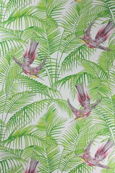Sunbird Wallpaper A delightful wallpaper designed by Matthew Williamson featuring colourful exotic birds darting between rich foliage in red...