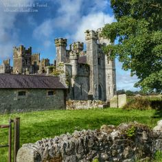 DuckettsGroveChristmas! -Vibrant Ireland and Travel