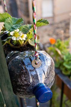 Jardim vertical com garrafa PET - Diversas ideias Diy Hanging, Hanging Planters, Bottle Garden, Garden Signs, Colorful Garden, Small Gardens, Garden Beds, Garden Projects, Indoor Plants