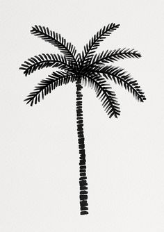 Cardboard Tubes, All Print, Lonely, Plant Leaves, Palm, Create, Prints, Inspiration, Beautiful