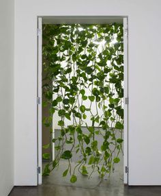 Want to make a curtain made of faux vines for over the library door :D