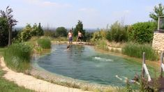 Swimming pond open day - 6th July 2013