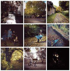 Schloss Möhren | Vakantie in een kasteel: My week on instagram #13  Ik hou van de herfst, van de prachtige kleuren. Kastanjes die glimmen, die heerlijke geuren.  Van het blad op de grond, een waas van oranje. Wat is het bos trots, op zijn kleurige franje.