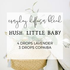 My Favorite Everyday Diffuser Blends Essential Oils For Babies, Essential Oils Guide, Young Living Essential Oils, Yoga Meditation, Young Living Baby, Reiki, Cedarwood Oil, Stress, Essential Oil Diffuser Blends
