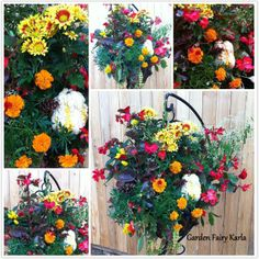 """Vibrant/Colorful fall hanging basket on hanging plant stand! Use of  marigolds looking like mini mums, mini pumpkins, gourds, chili peppers and pine cones give it that """"harvest"""" kick!"""