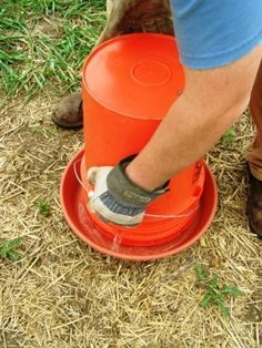 Chicken Coop - Homemade Chicken Waterer --- I really NEED to make one of these. Building a chicken coop does not have to be tricky nor does it have to set you back a ton of scratch.