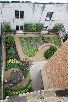 Bird's eye view of the intensive green roof at Lenox Hill Neighborhood House