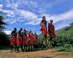Masai Morans Perform Traditional Dance Poster by David Cayless. All posters are professionally printed, packaged, and shipped within 3 - 4 business days. Choose from multiple sizes and hundreds of frame and mat options. Framed Prints, Canvas Prints, Art Prints, All Poster, Posters, Image Collection, Fine Art America, David, Traditional