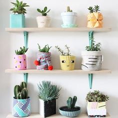 Cool plant display idea at Smug