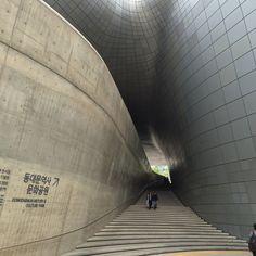 동대문운동장 DDP ; 5,800톤의 철근을 사용하여 기둥없는 넓은 전시장, 회의장 완성