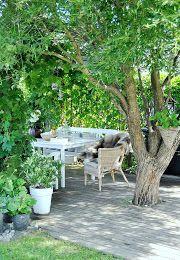 Inlägg från trädgården hittar du här