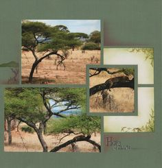 Scrapbooking layout, 3 pictures, landscape
