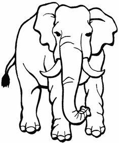 die besten 25 elefant ausmalbild ideen auf pinterest   elmar elefant, elmer die elefanten und