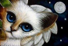SIAMESE ANGEL KITTEN CAT FULLMOON & STARS Cyra R. Cancel - Pesquisa Google