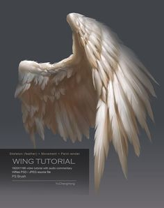 For people who may interested how to draw and paint bird wings , if you are interested please check the link below, Wing Tutorial This package includes: 1920X1168 videos (MP4 format) ( 2hr 4 mins) ...