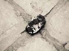 """""""A Vincent: Elogio a la Angustia"""", Benjamín Ortega, Fotografía Digital, 2014."""