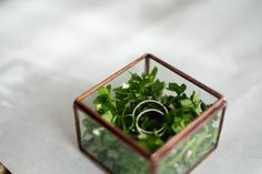 Hey, I found this really awesome Etsy listing at https://www.etsy.com/listing/228946326/little-glass-box-with-a-hinged-roof-ring