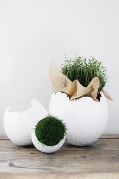 DIY this outstanding decoration craft by planting moss, grass or flowers in these crafty eggs. Once you see this adorable Easter egg decoration, you will feel happy for the whole day. Spring Decoration, Diy Easter Decorations, Making Easter Eggs, Diy Ostern, Easter Table, Egg Decorating, Easter Crafts, Easter Ideas, Happy Easter