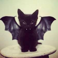 Resultado de imagem para Imagens Tumblr Halloween