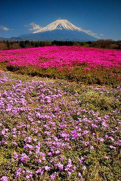 Mt. Fuji http://media-cache-ec5.pinterest.com/upload/279293614362670807_X7a9q8Hq_c.jpg