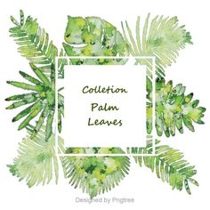 Palm leaves colletion,Palm leaves ,Religious culture, Jesus, religion, church, olive leaf, palm vector, green, plant, Christianity