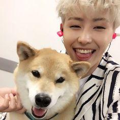 Ukwon IG Update Maruと。 めっちゃ 可愛い! 시바견 마루랑 ,, 기여움.. 형아랑 가자
