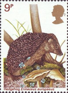 British Wildlife 9p Stamp (1977) Hedgehog