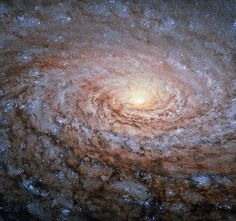 A galactic sunflower - Sunflower Galaxy - Wikipedia, the free encyclopedia