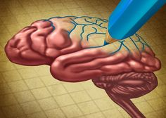La Terapia Cognitivo-Conductual, dos tratamientos que funcionan bien juntos