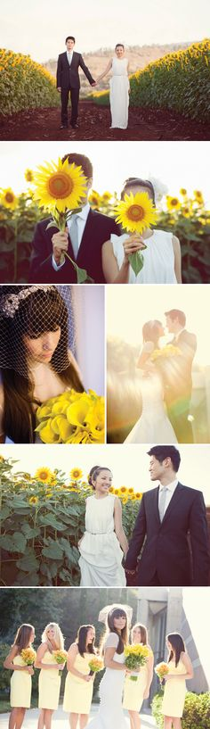 i now want to get married in a sunflower field more than anything! or at least take pics there!