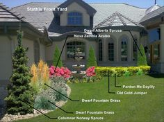 Images Of Florida Landscape Designs  SanibelCaptiva - Florida landscaping ideas for front yard