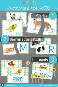 PETS ACTIVITIES FOR KIDS 3 IN1 -MAMAYNENE