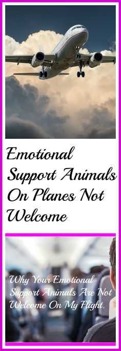 Why your emotional support animals are not welcome on my flight.