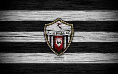 Download wallpapers Ascoli Picchio FC, Serie B, 4k, football, wooden texture, Italian football club, logo, emblem, Ascoli Piceno, Italy