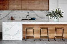 Natural wood and marble modern kitchen