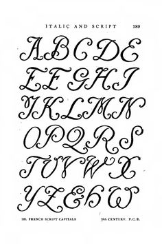 Different Letter Styles  Essentials Of Lettering Chapter