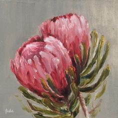 A gallery of daily painting by Heidi Shedlock List Of Paintings, Paintings I Love, Protea Art, Protea Flower, South African Flowers, Australian Wildflowers, Acrylic Art, Acrylic Paintings, Oil Paintings