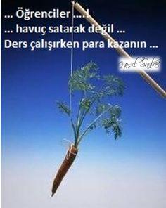 http://auroraturk.blogspot.com.tr/