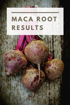 Maca Root Results - Superfoodliving.com Aphrodisiac For Men, Maca Benefits, Maca Root Powder, Certified Nutritionist, High Metabolism, Superfood Recipes, Endocrine System, Superfoods, Diet