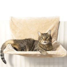 Fleece Bed for Cats //Price: $60.17 & FREE Shipping //     #ilovemycat #catlife